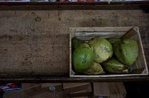 Florida Young Coconut